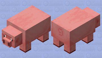 Big Pig / vanilla eyes / Worried / remade Minecraft Mob Skin