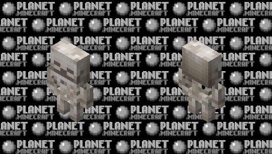Baby Skeleton / Normal / v.1 / Retexturized Minecraft Skin