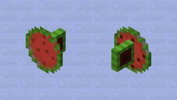 Watermelon Shield Minecraft Mob Skin