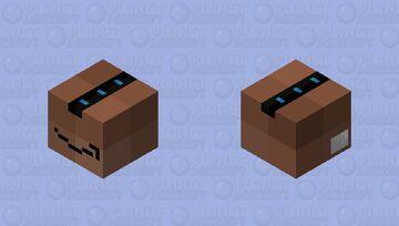 Amazon Prime Box Minecraft Mob Skin