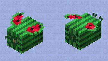 Flying Watermelon Minecraft Mob Skin