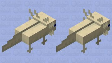 Axolopito (Yes I know it's spelled wrong) Minecraft Mob Skin