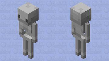 Simple Skeleton Minecraft Mob Skin