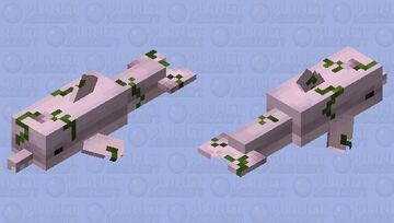 African River Dolphin Minecraft Mob Skin