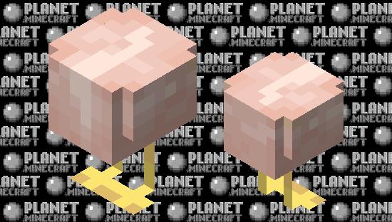 Raw Chicken Minecraft Skin