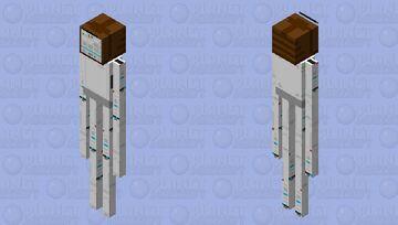 The EnderWii Minecraft Mob Skin