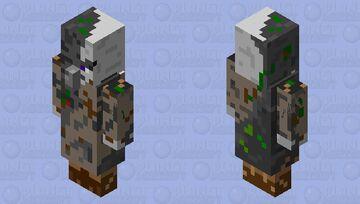 Stone/Illager Minecraft Mob Skin