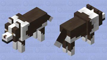 Border collie brown version Minecraft Mob Skin