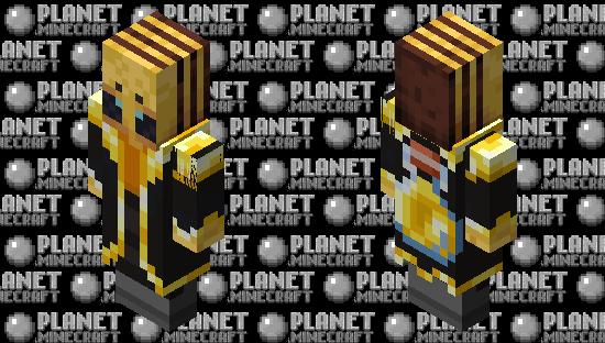 BeeIllager(Re Texturing) Minecraft Skin