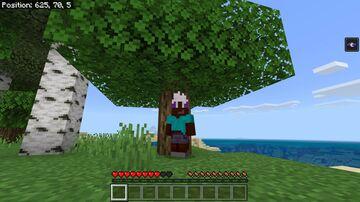 Minecraft Bedrock...A Drow's Life Minecraft Mod