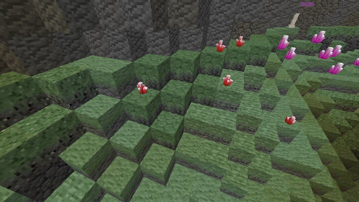 Slime covered stone in the Slime Cave biome