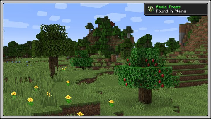 Apple Trees in Plains