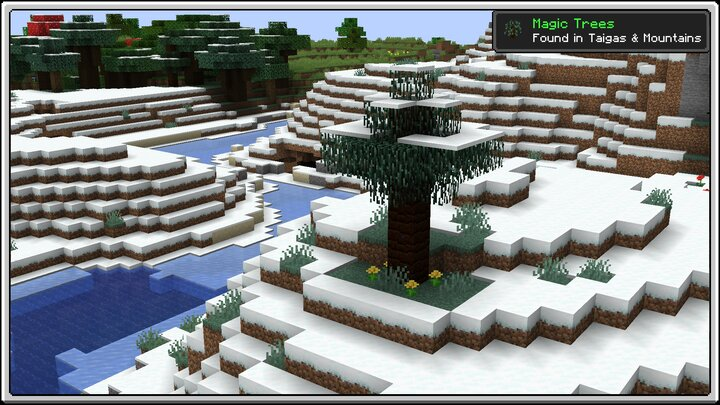 Magic Trees in Taiga