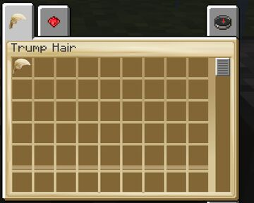 Trump Hair Minecraft Mod