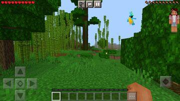 Player Render Hud Minecraft Mod