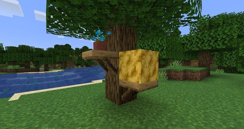 Wax Block Oak Shelves