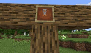 Infinit poule [1.16.5] Minecraft Mod