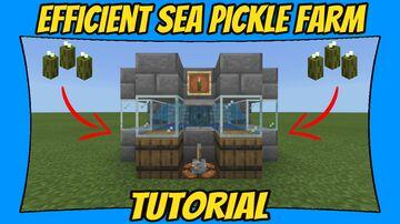 Efficient Sea Pickle Farm Tutorial [Minecraft Bedrock Edition] [MCPE] Minecraft Map & Project