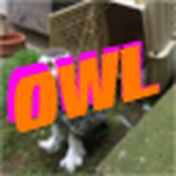OWL.Official Minecraft server map Minecraft Map & Project