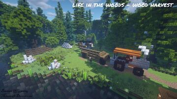Life in the Woods Minecraft Map & Project