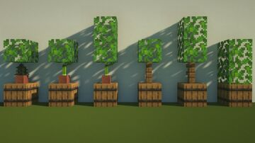 Potted Plants Minecraft Map & Project