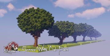 White Oak Tree Pack - Summer Version Minecraft Map & Project