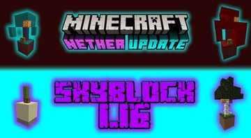 SKYBLOCK 1.16 Minecraft Map & Project