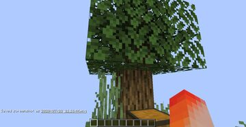 Skyblock Minecraft Map & Project