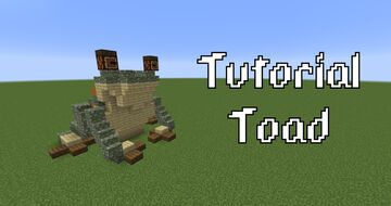 Toad Minecraft Map & Project