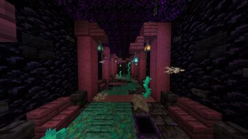 Hallway that rains obsidian Minecraft Map & Project