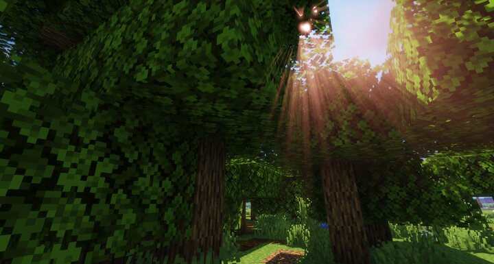 A bit of the forest, as of v1
