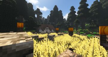 Dallback Forest Minecraft Map & Project