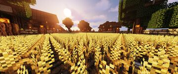 Bodacity Minecraft Map & Project
