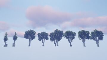 Birch Tree Set | DOWNLOAD SCHEMATIC here! Minecraft Map & Project