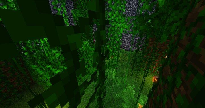 Jungle level