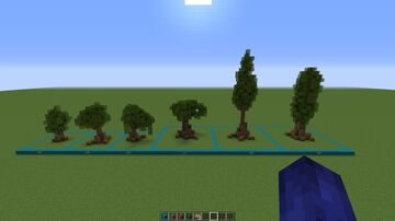 Custom Tree Collection by PusheenWolfMom Minecraft Map & Project