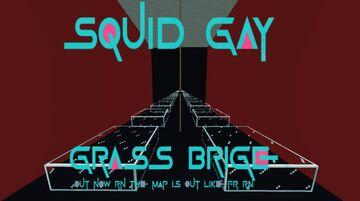 Squid Gay: Grass Brige Minecraft Map & Project
