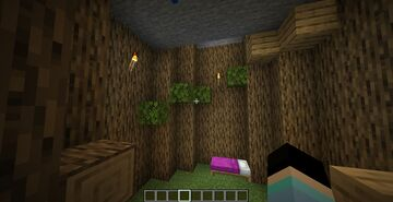 BIOME PARKOUR Minecraft Map & Project