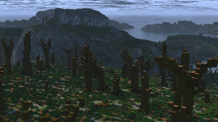dead jungle forest