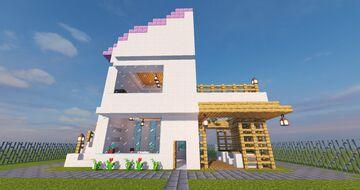 Modern Home Schematic Minecraft Map & Project