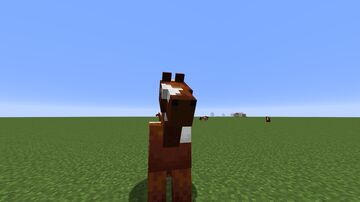 Timeline of Blocks and Items (21w08b) Minecraft Map & Project