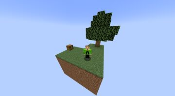 Classic Skyblock Minecraft Map & Project