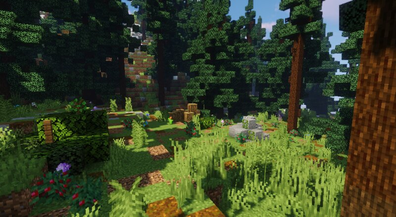 very detailed forest