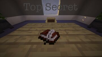 Top Secret Minecraft Map & Project