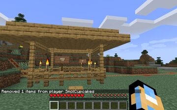 Scenic Roller Coaster!!! Minecraft Map & Project