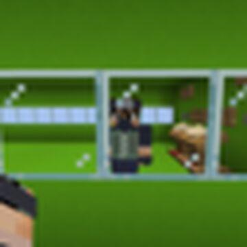 The immersive Portals Demo/Puzzle/experitment Minecraft Map & Project