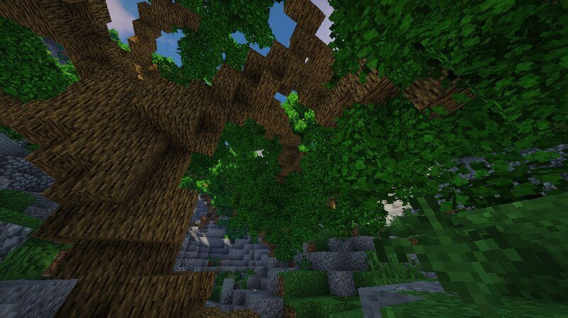 Forest View With Shaders