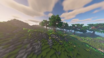Living Forest Minecraft Map & Project