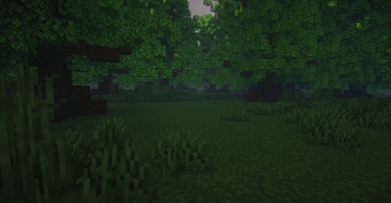 The Dark Forest