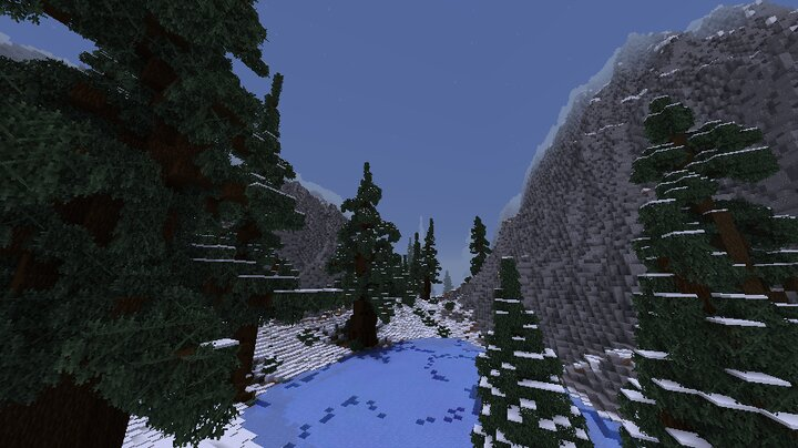 Forest Valley View
